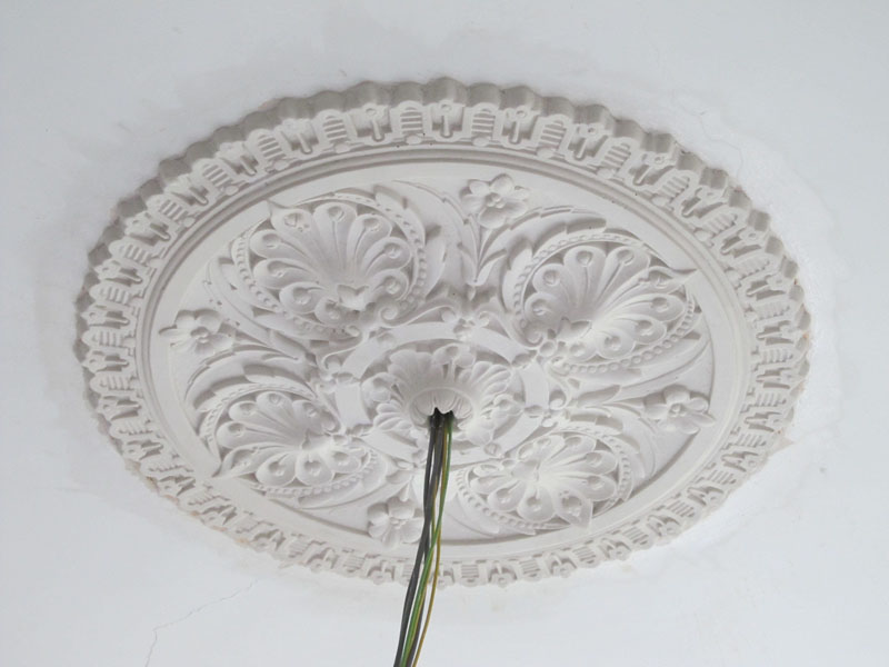 plain ceiling rose examples